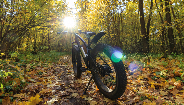 10 Best Fat Tire Electric Bikes in 2020